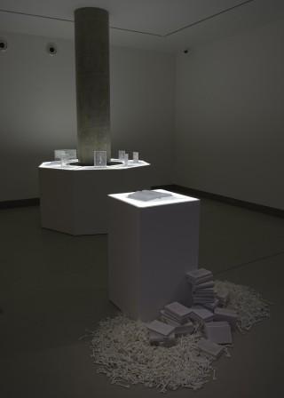 Aiko Miyanaga Installation shot 72dpi 3