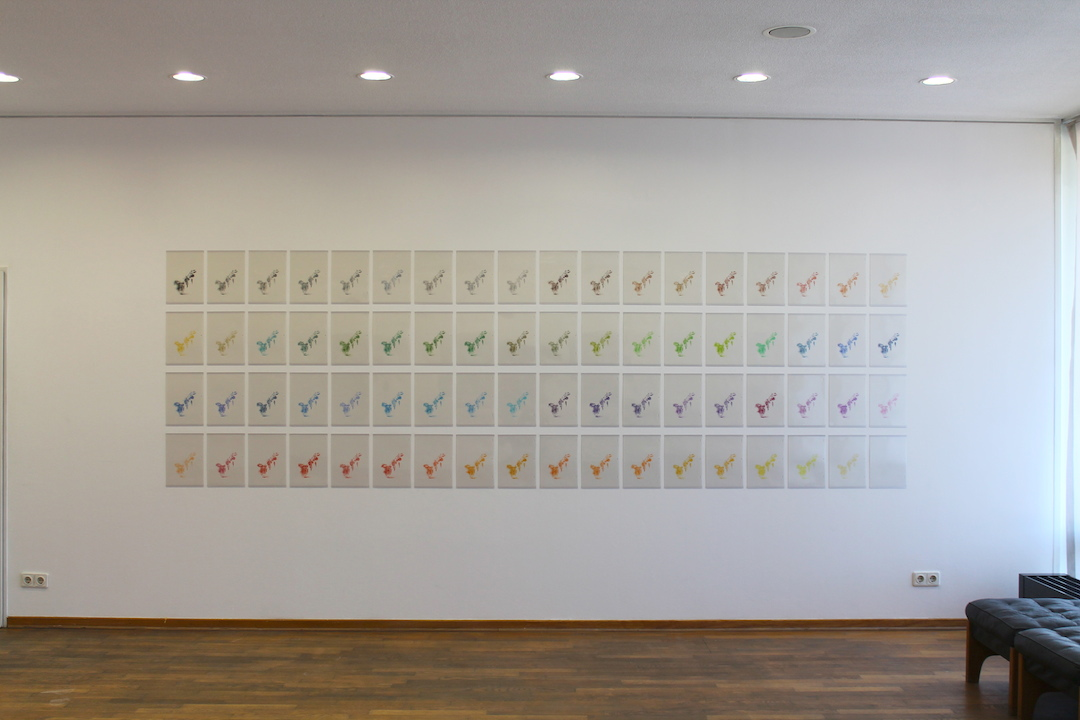 Kouichi Tabata Installation shot of 72 color (Rose), 2013 HD video and a set of 72 pieces of the original A4 drawings  Installation dimension variable Courtesy of the artist