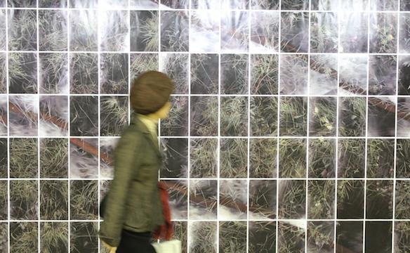 Hidemi Nishida Installation shots of scan_01_5.jul.2014_fin (detail), 2014 multiple A4 giclée prints Courtesy of the artist