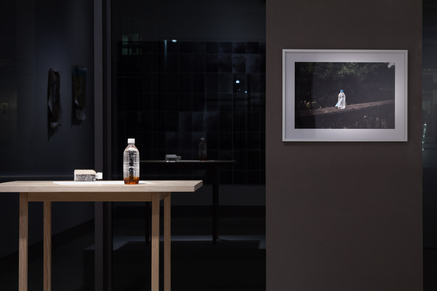 Ryohei Usui Installation shot of by the mountain path, 2015 Mixed media Courtesy of the artist, MUJIN-TO Production and White Rainbow Photo: Tom de Gay