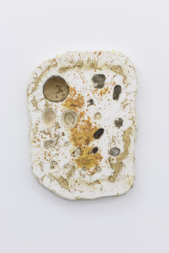 Hannah Lees, Tablet XXX (2015) Plaster, gold magnetic sand, coconut shell, coral, stone, pecan shell, lychee stone, limpet shell, animal teeth, cockle shell. Installation view.